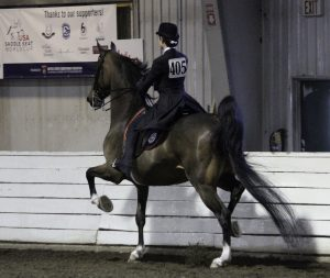 rider 405