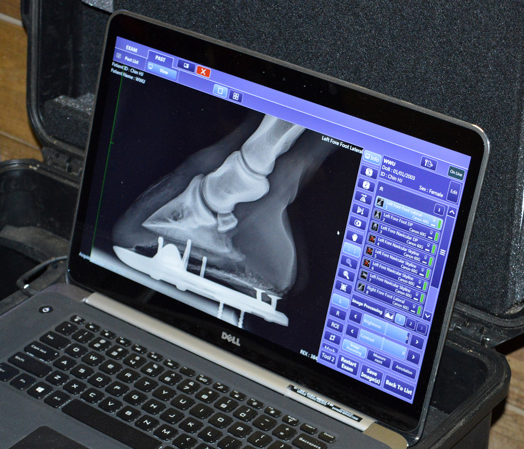 growth of digital radiology Digital growth, orland park, illinois 597 likes social media management & graphic design providing compelling photos with graphic overlays to.