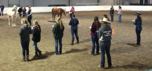 Youth 4H and FFA judging teams participate in a judging clinic at William Woods University.
