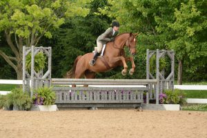 A William Woods University equestrian student shows off her jumping skills.