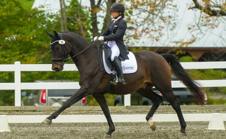 Courchaine riding Dressage
