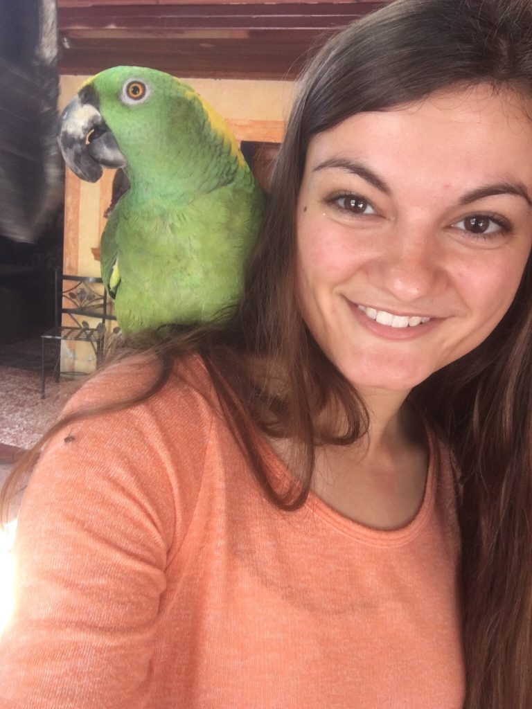 Caitlin Cook with a native parrot