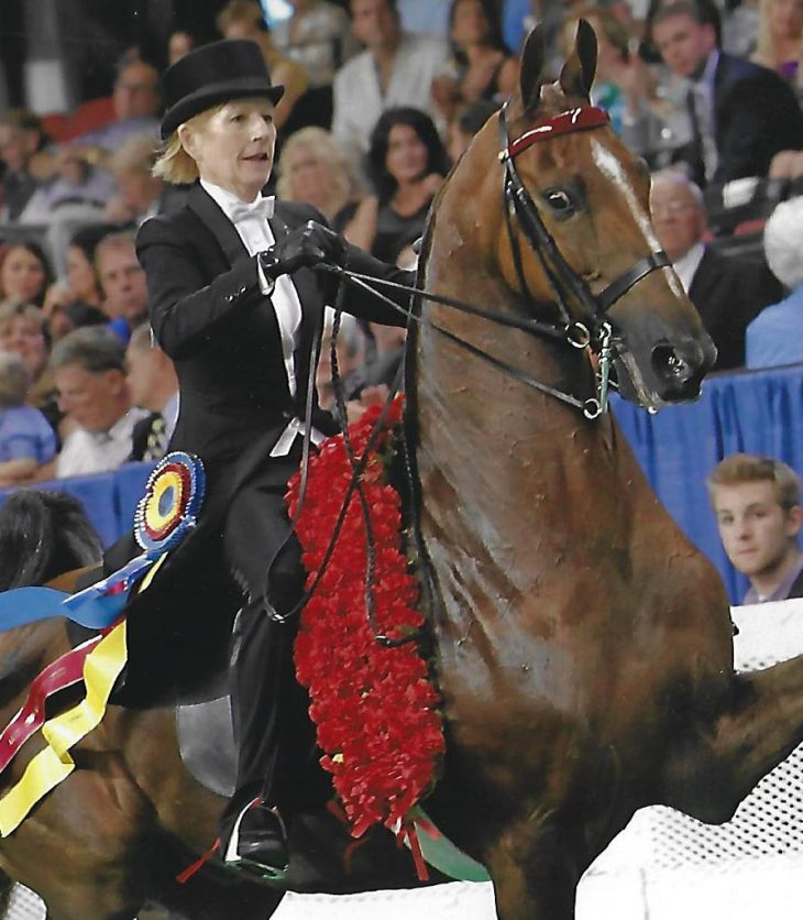 Sarah Winning the Ladies 3-gaited World's Championship aboard WC. CH. Mr. Center Stage